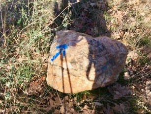 Flechas azules de la Ruta del Herrero.